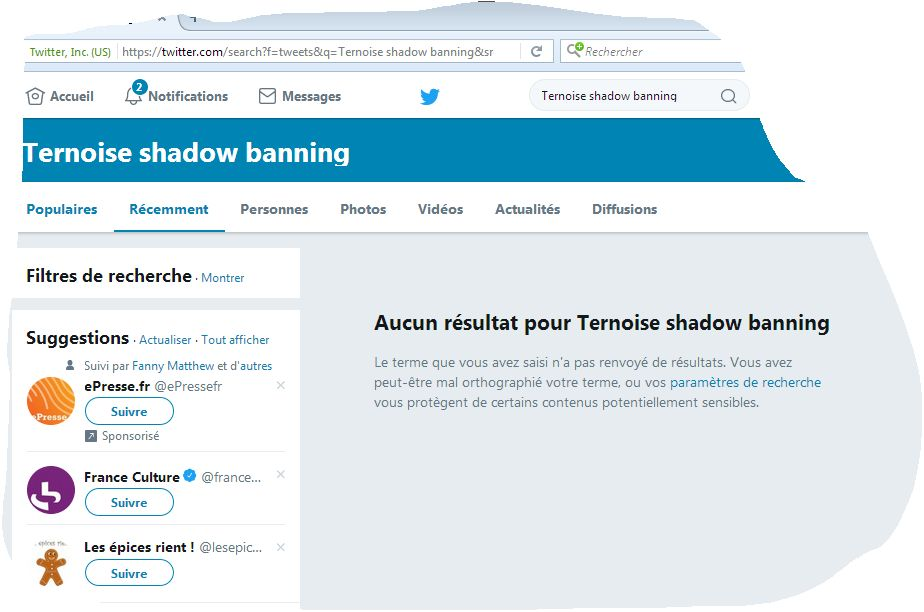 photo Ternoise shadow banning sur twitter France ?